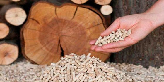 Виробництво деревних пеллет – характеристики і особливості