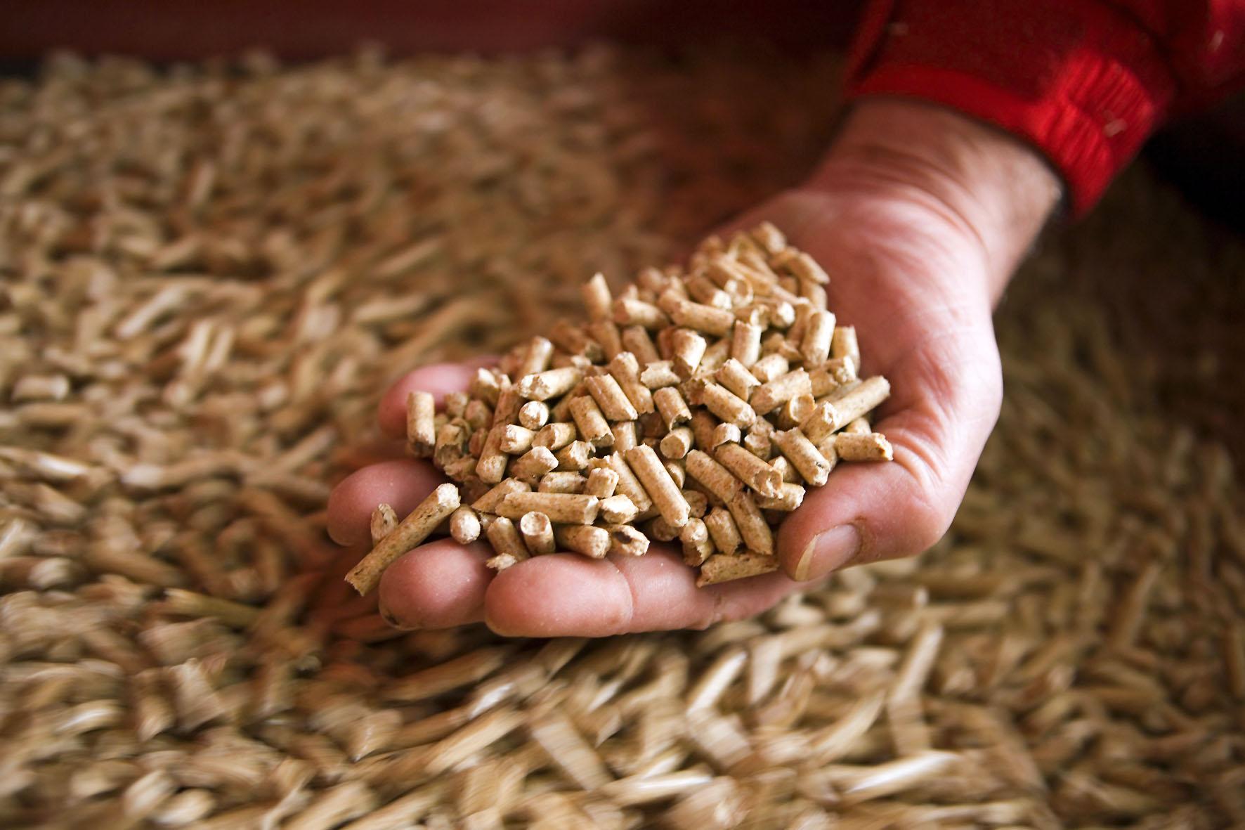 Пеллеты из соломы — особенности и технология производства